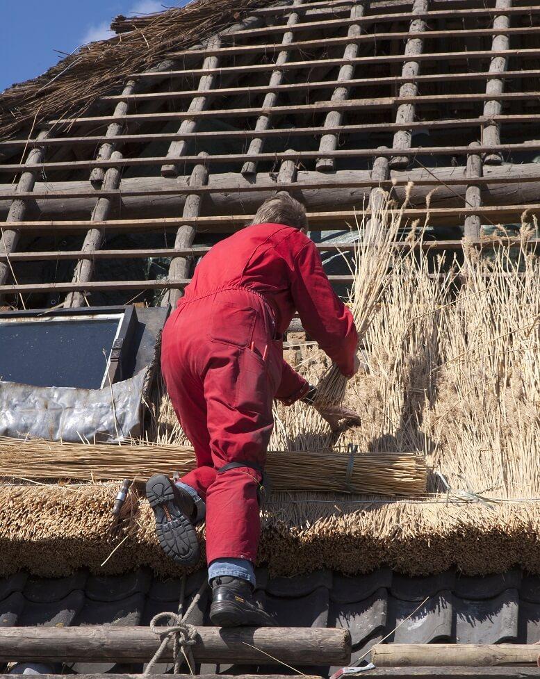 rieten dak maken